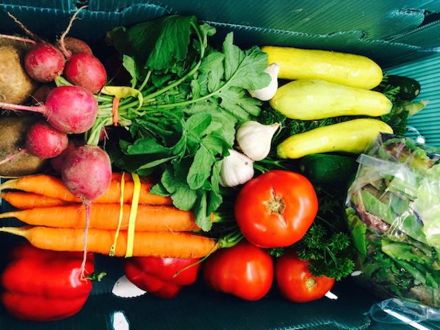 Wholesale Produce Boston Ma