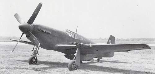 P 51 Mustang Relics