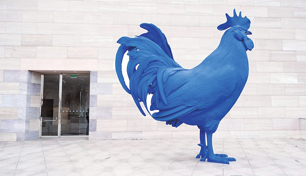 Rooster School Rikki You Takes Blue