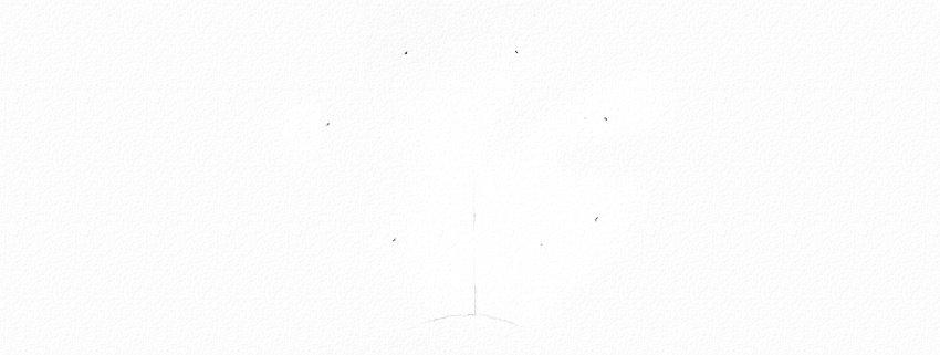 """Tekeningsles met acrylverven: teken """"White-eyed"""" masterclass, tekening lessen, acryl, dierlijk, schilderen, lang, pluimvee, tekening, les"""