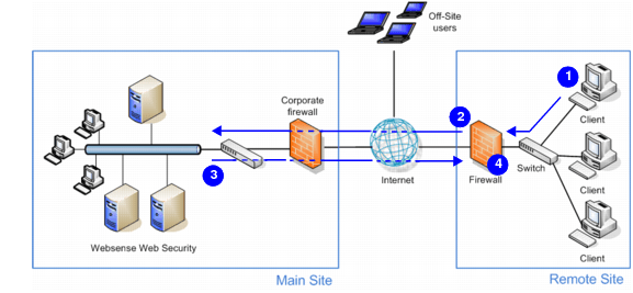 81 Web Websense Installation Guide Security