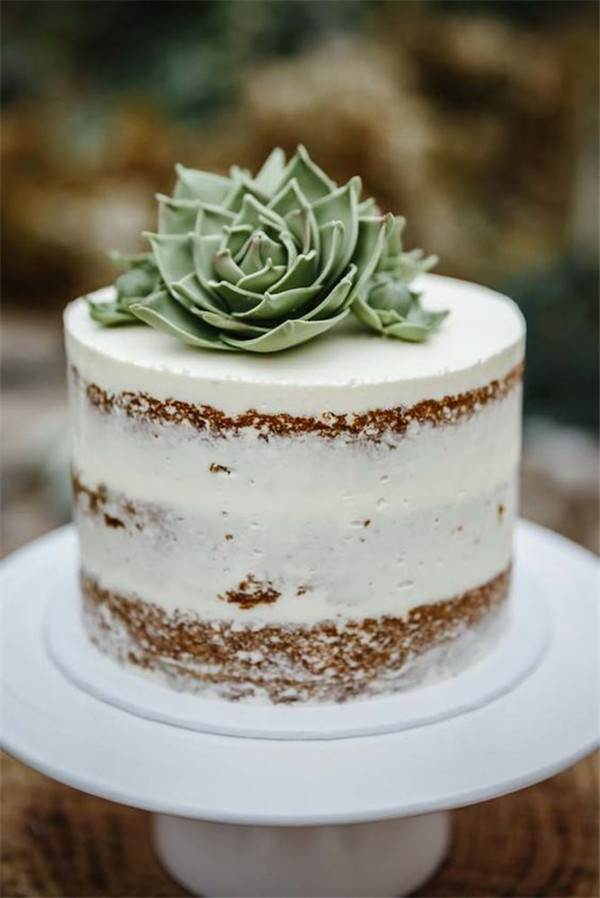 20  Succulent Wedding Cake Inspiration That Wow    10 Naked Succulent Wedding Cake