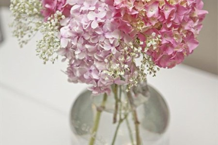 Flower shop near me pink baby s breath flower flower shop pink baby s breath flower the flowers are very beautiful here we provide a collections of various pictures of beautiful flowers charming mightylinksfo