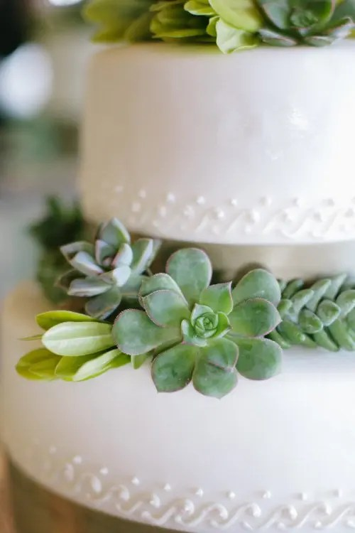 Succulent Wedding Cakes  A Hot Wedding Trend   crazyforus Succulent Wedding Cake