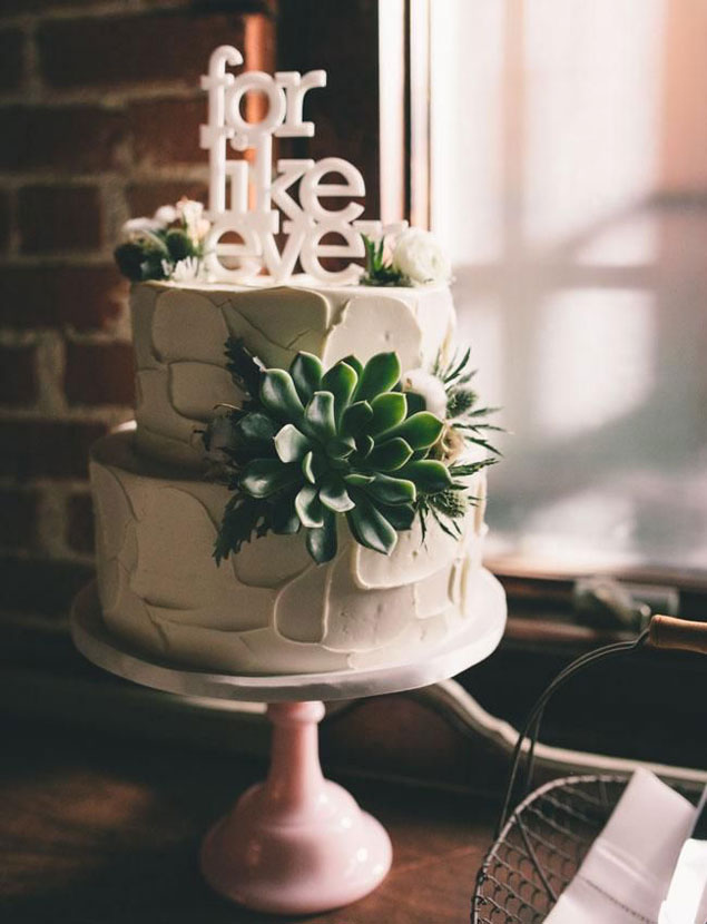 Succulent Wedding Cakes Photo Source     J Wiley PhotographyPin it