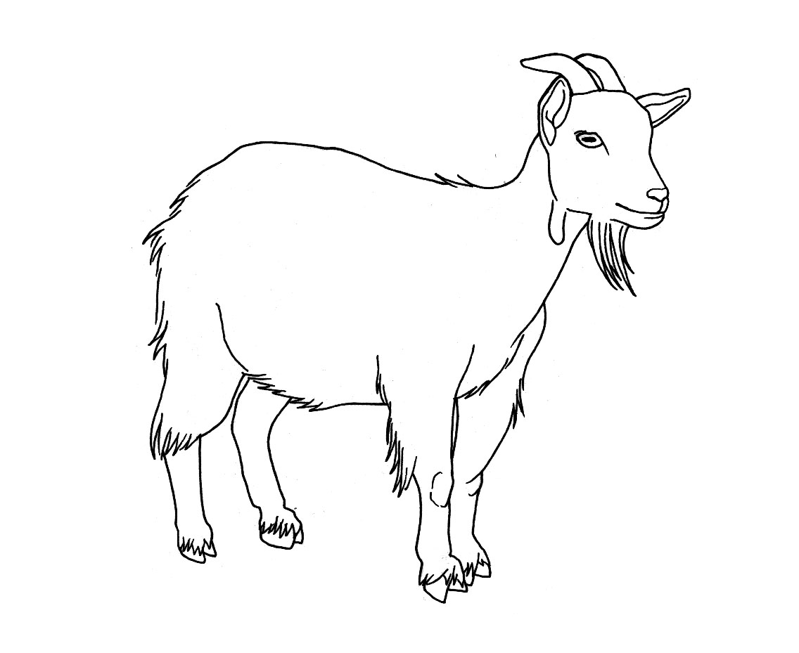 Goat drawing photo 1