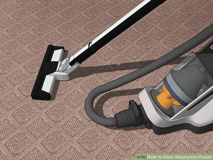 3 Ways to Clean Stainmaster Carpet   wikiHow Image titled Clean Stainmaster Carpet Step 1