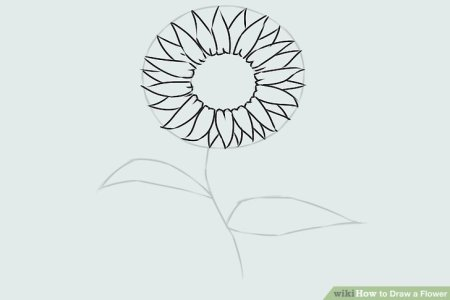 Butterfly And Flower Coloring Pages Page Small Willpower Picture Of Flowers The Sun Photo Gallery