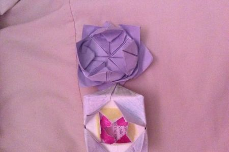 Flower shop near me how to fold lotus flower for praying flower shop how to fold lotus flower for praying the flowers are very beautiful here we provide a collections of various pictures of beautiful flowers charming mightylinksfo