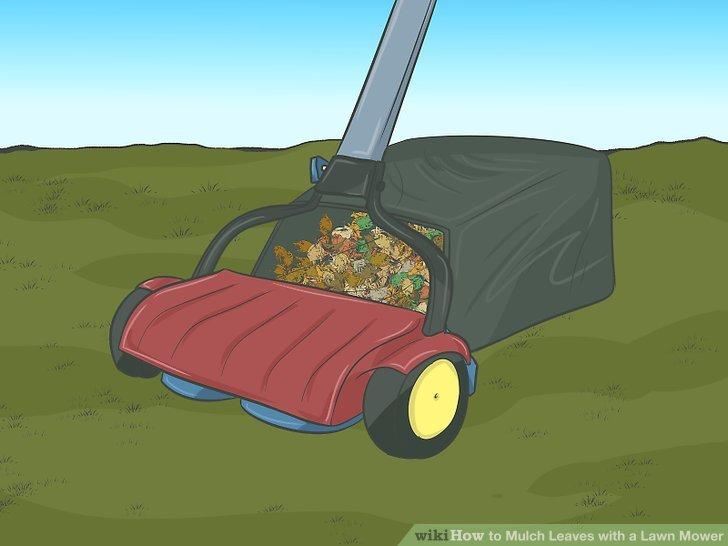 How Mulch Leaves Lawn Mower
