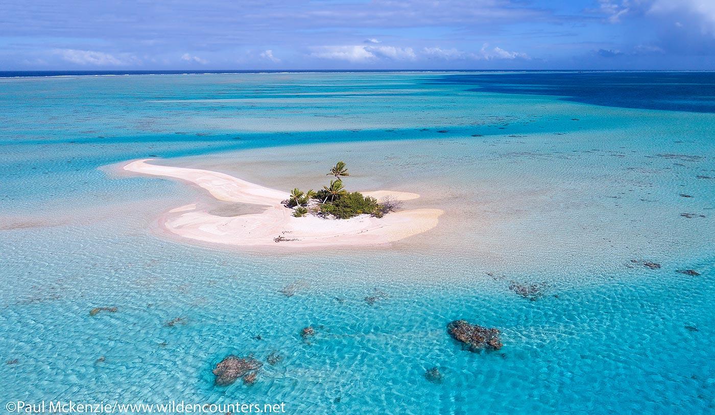 French Polynesia Wildencounters