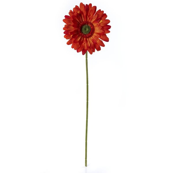 Wilko Gerbera Single Stem Flower Orange   Wilko Wilko Gerbera Single Stem Flower Orange Image