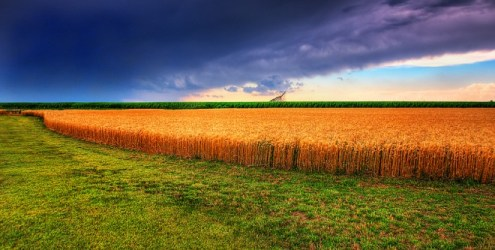 The Geography of American Agriculture   WIRED The