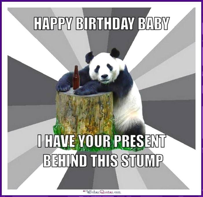 Barb Meme Happy Animal Birthday