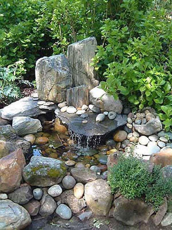 Outside Pond Plants
