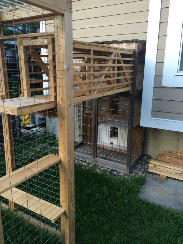 Awesome Outdoor Cats Walkway And House