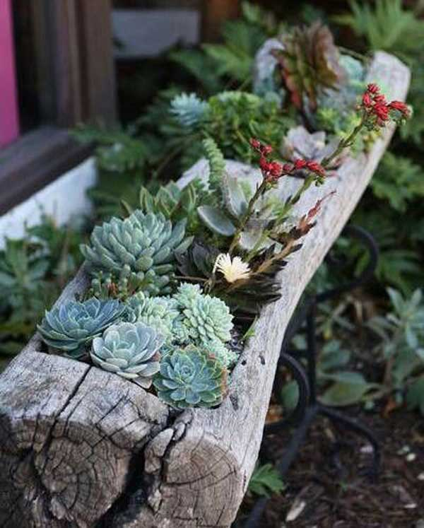 Cheap Garden Pots Sale