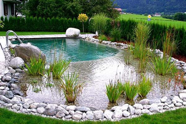 Building Natural Pond