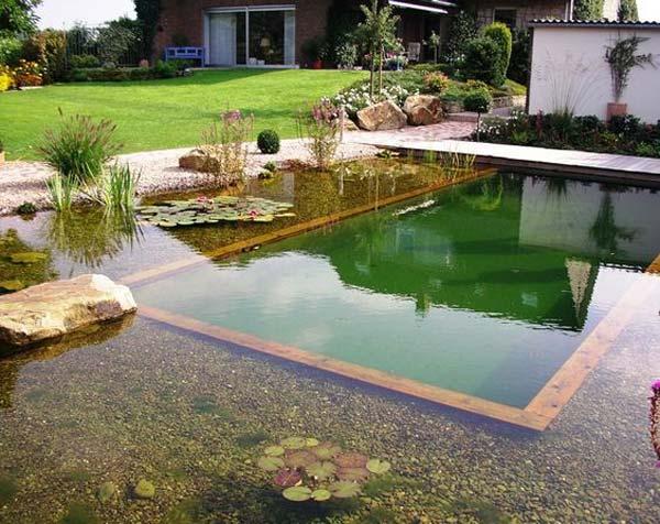 Backyard Pool Ideas Budget