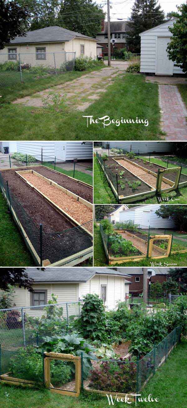 Easy Above Ground Garden