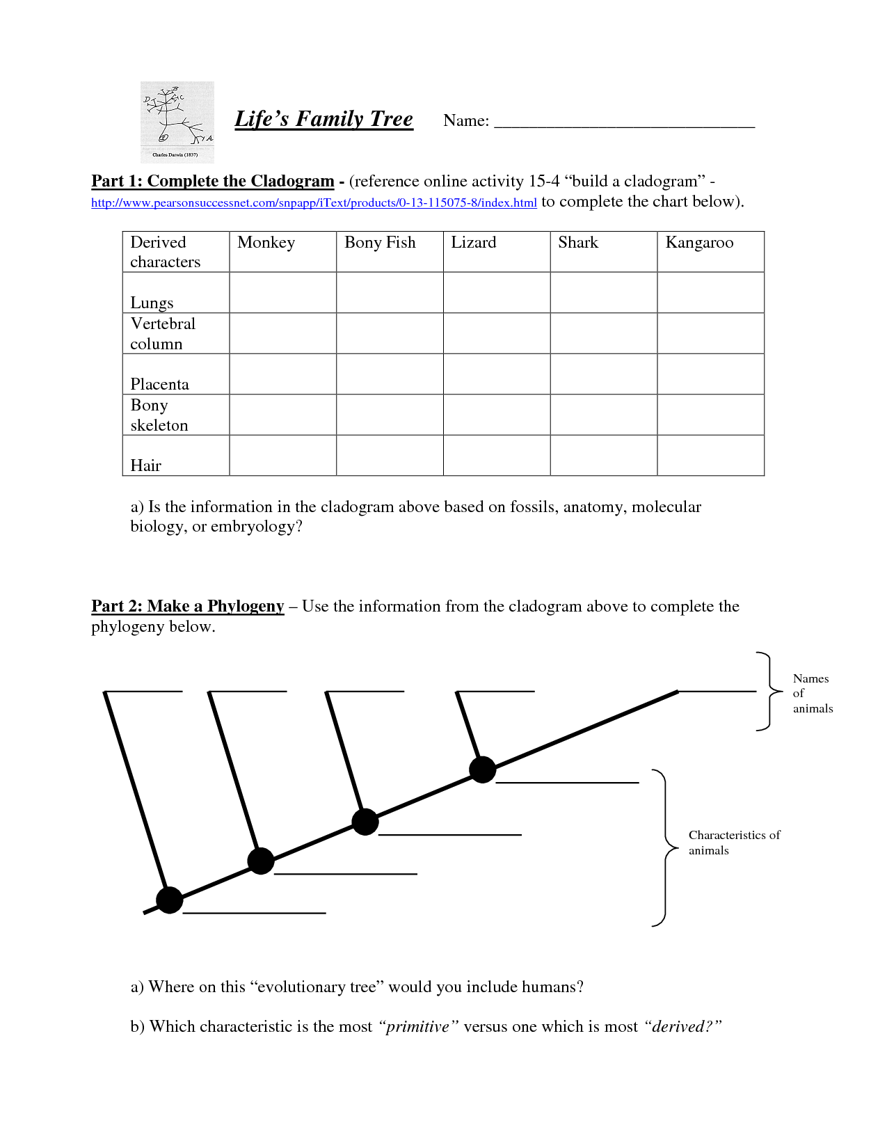 Cladogram Worksheets - Switchconf