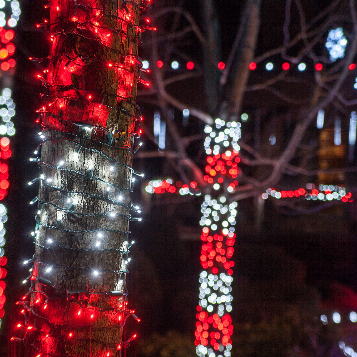 Outdoor Christmas Lights Big Bulbs