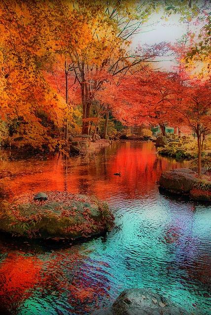 13 Inspirational Autumn Pictures Youramazingplaces Com