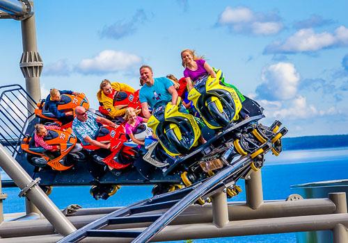 Life Roller Coaster