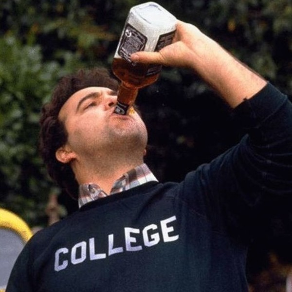 Animal House    The 20 Best Drunk Moments In Movies And TV   Zimbio  Animal House
