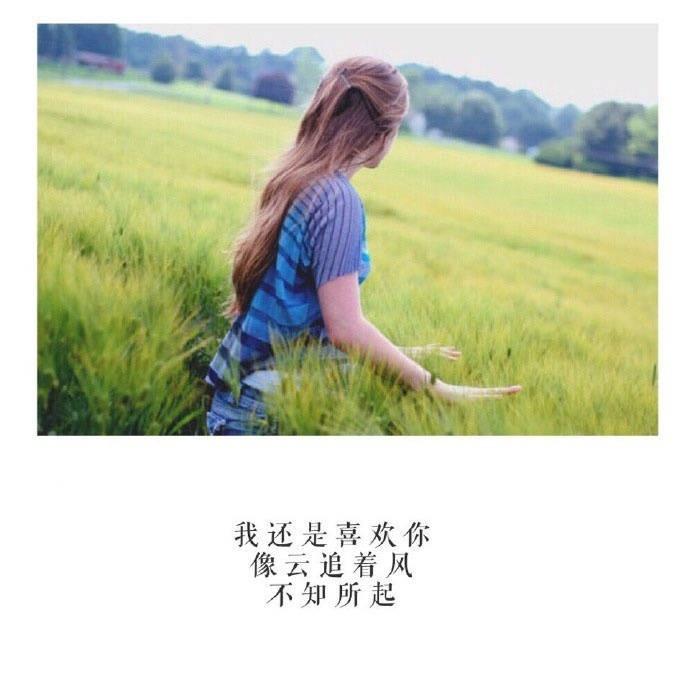 带文字的图片:给我一个紧紧的无声拥抱,被你温柔地揉揉头发