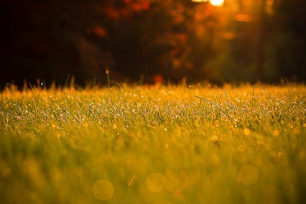 晚安心语170803:努力就是光,成功就是影