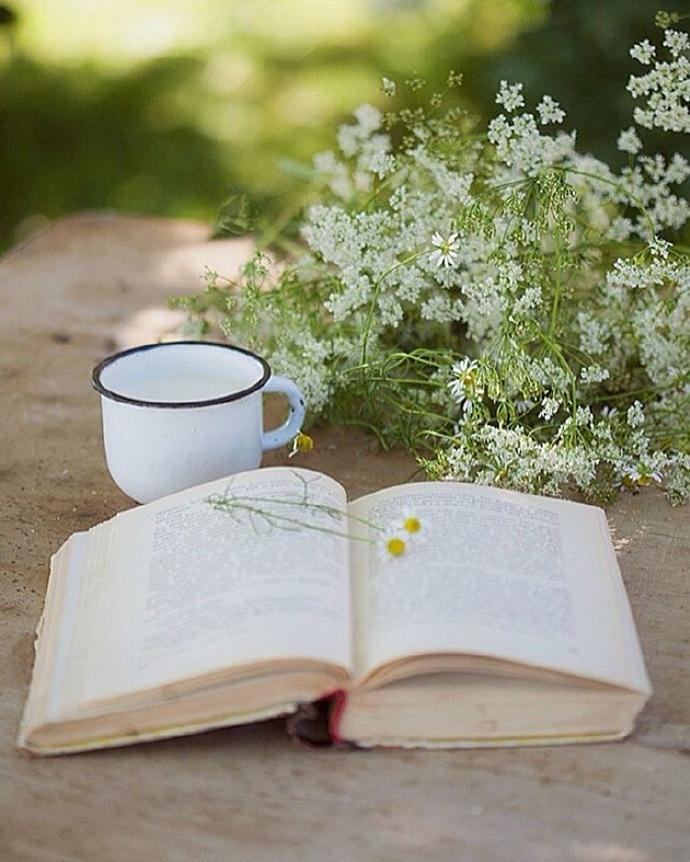 四月早安心语:有些感情就像废纸篓里的文件,不想看到,也不忍清空