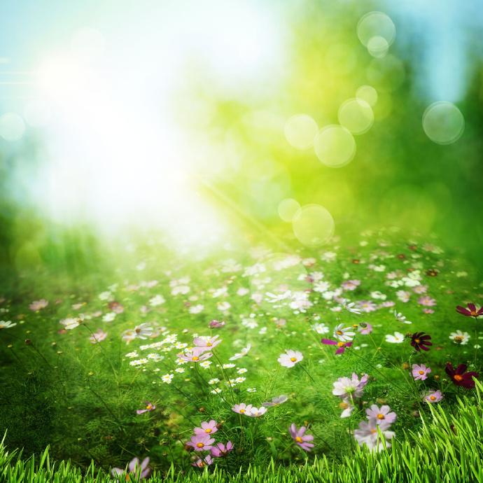 晚安心语170812:一个人最大的魅力,是拥有一颗阳光的心态