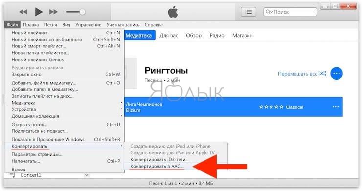 Windows 컴퓨터에서 iTunes를 사용하여 iPhone 용 벨소리를 만드는 방법은 무엇입니까?