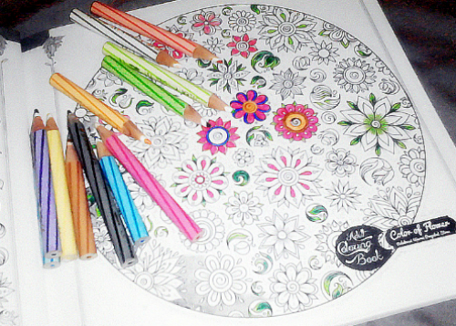 Adult Coloring Book Flowers Yukcoba In