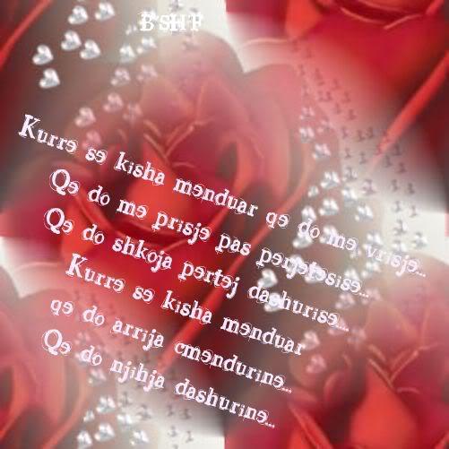 Poezi Ditlindje 2013