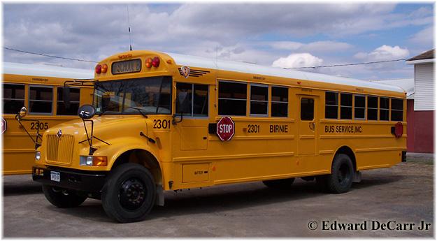 1996 School Bus International Thomas